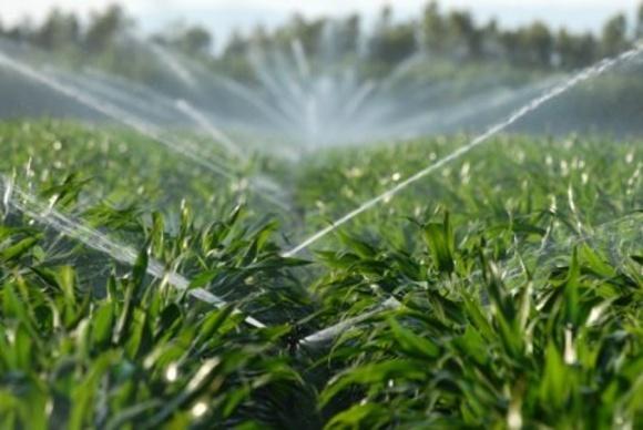 У США створили пестицид нового принципу дії фото, ілюстрація