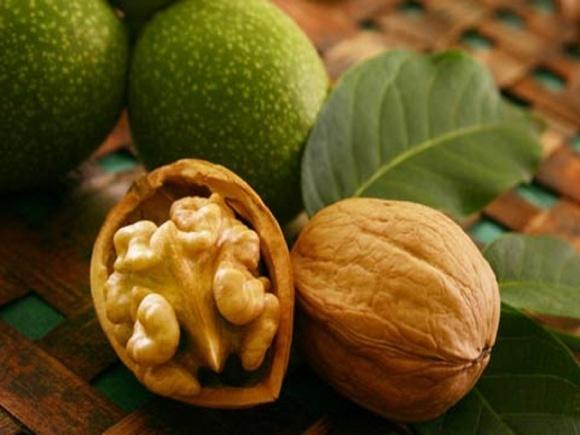 Украинские орехи на мировом рынке одни из самых дешевых фото, иллюстрация