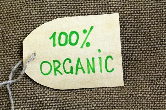 Вітчизняний ринок органічних продуктів зросте на 20% в 2017-му фото, ілюстрація