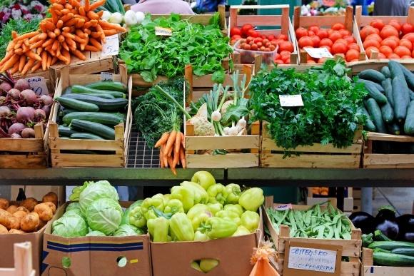 В Крыму снижается ассортимент овощей из-за отсутствия воды фото, иллюстрация