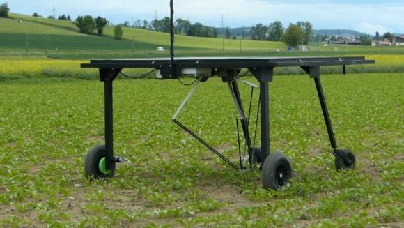 Три робота, которые успешно борются с сорняками фото, иллюстрация