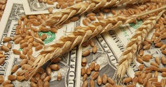 Аграрные расписки имеют особое значение накануне полевых работ фото, иллюстрация