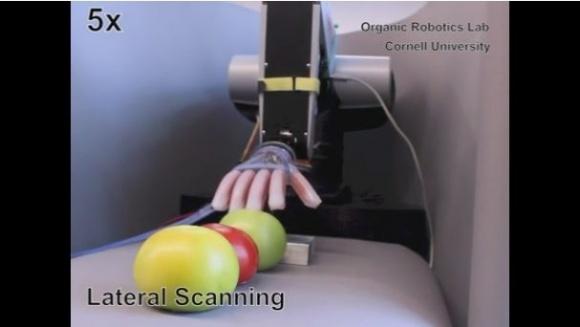 Изобретен робот для определения спелости помидоров фото, иллюстрация