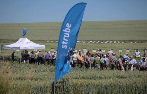 Strube відкриє на Черкащині насіннєвий завод фото, ілюстрація