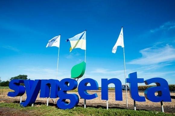 Syngenta пополнила линейку зерновых четырьмя новинками фото, иллюстрация