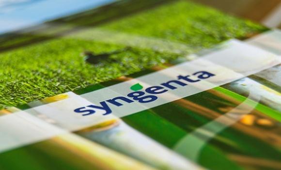 Syngenta покупает у COFCO семенной бизнес фото, иллюстрация