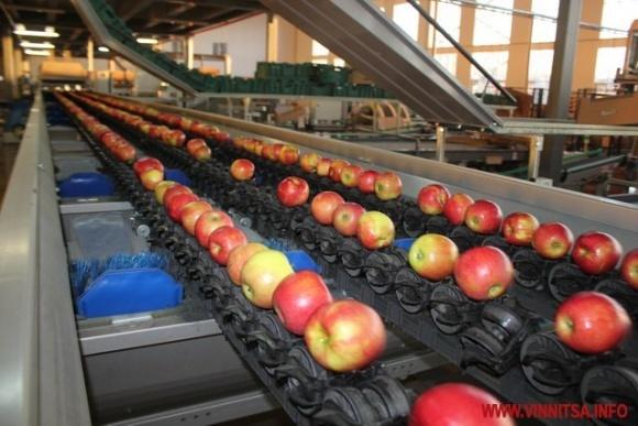 «Агро-эталон» планирует построить на Винниччине завод по переработке фруктов фото, иллюстрация