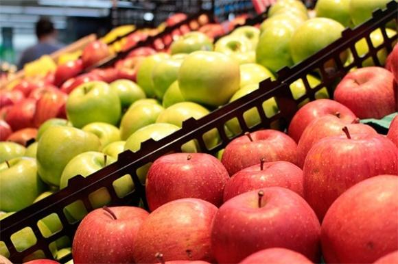 Сім найпопулярніших сортів яблук в Європі фото, ілюстрація