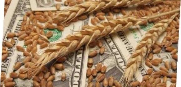 """Зерновые """"теневики"""" - под покровительством контролирующих органов фото, иллюстрация"""
