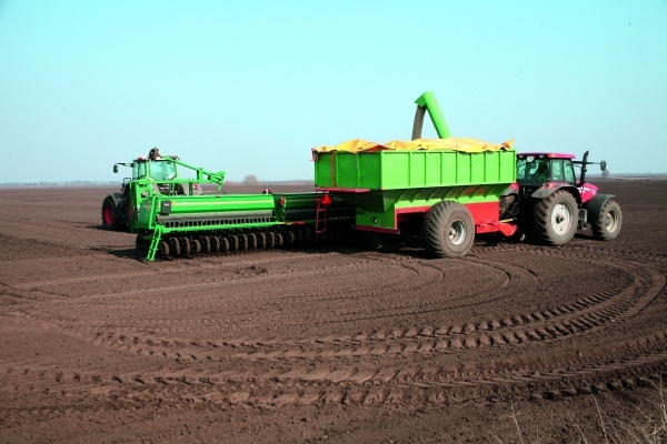 При ранних сроках посева зерновые переростают и больше повреждаются вредителями